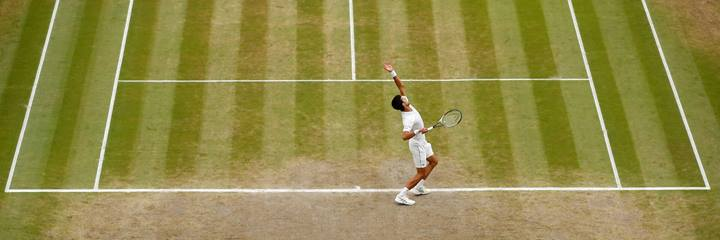 Djokovic at Wimbledon