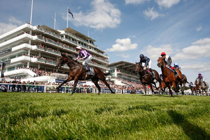 Investec Derby Festival racing guide